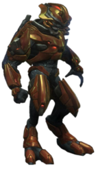 HR-Sangheili Major 01.png